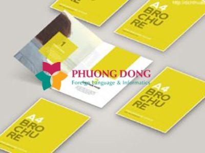 Dịch thuật brochure, catalogue tiếng Trung nhanh chóng, chính xác