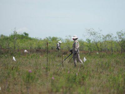 Việt – Hàn phối hợp khắc phục hậu quả chiến tranh