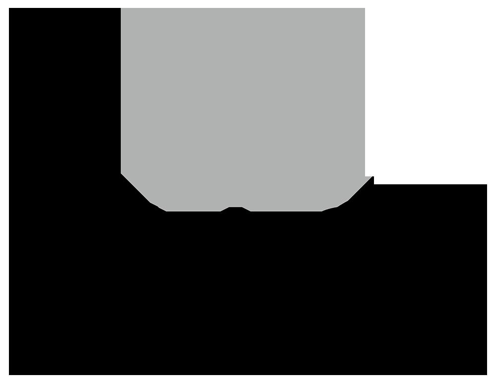 Image Skincare logo
