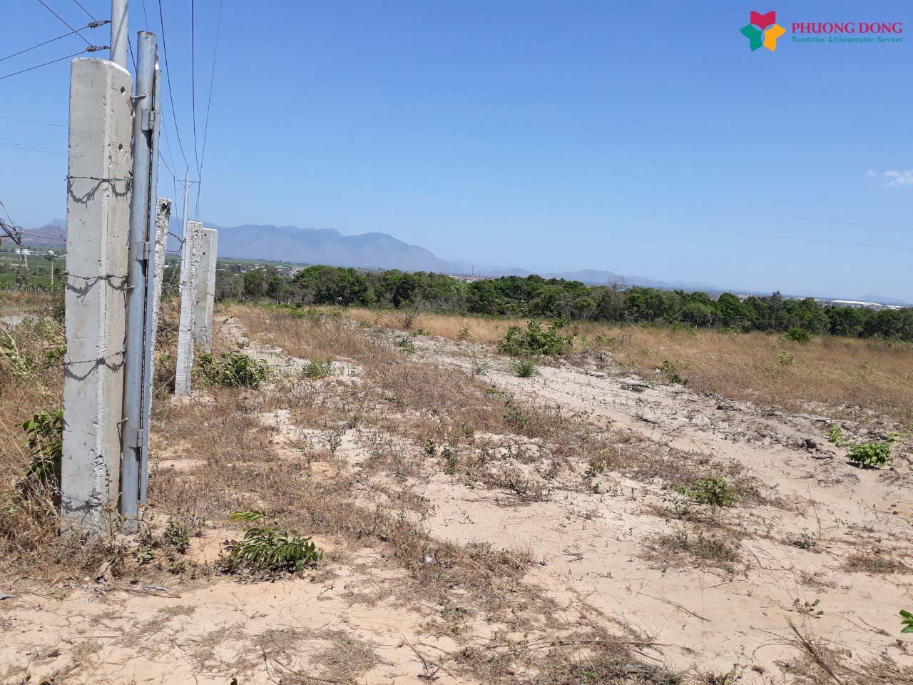 Phiên dịch tiếng Anh khảo sát thực địa hiện trường dự án điện năng lượng mặt trời