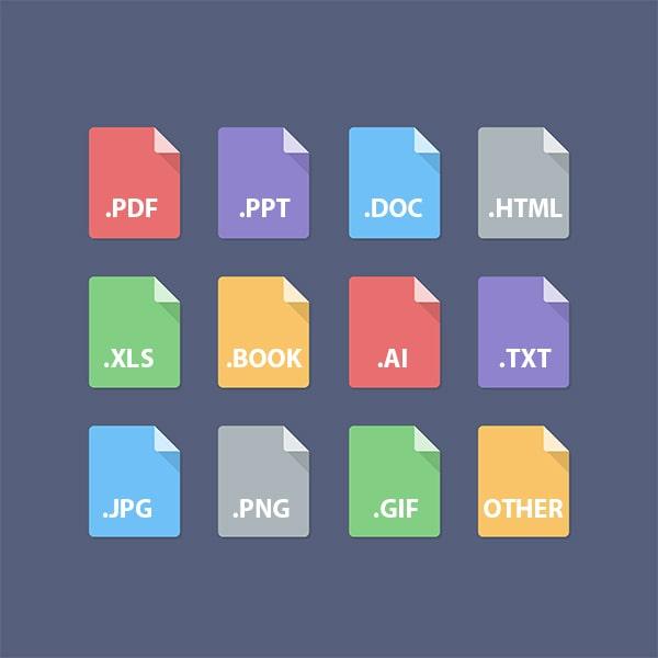 Các định dạng Files dịch thuật
