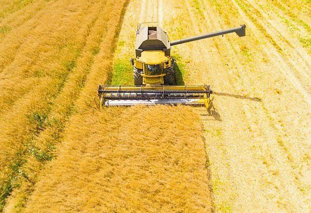 Phiên dịch chuyên ngành nông nghiệp