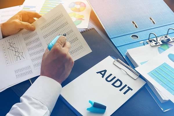Kiểm toán báo cáo tài chính - Financial Statement Audit